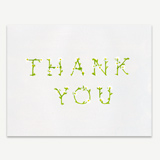 Thank You In Daisies Greeting Card