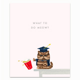 What to do Meow? Greeting Card