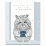 New Grey Hare Coming In? Greeting Card